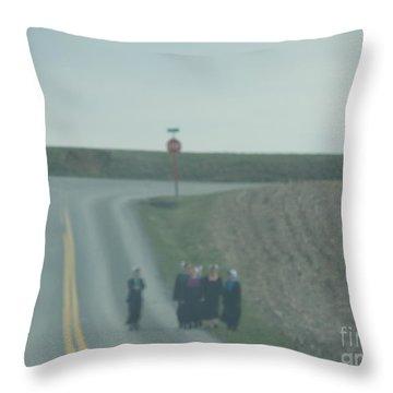 An Evening Stroll Throw Pillow