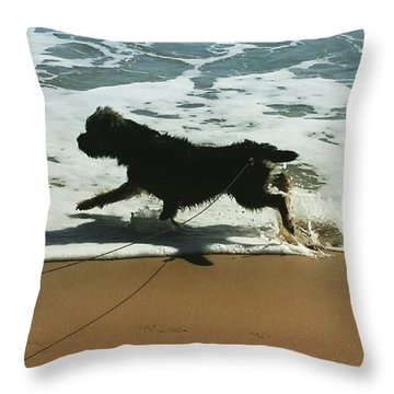 Seaside Frolics Throw Pillow