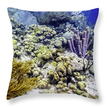 Throw Pillow featuring the photograph An Explosion Of Life II by Perla Copernik