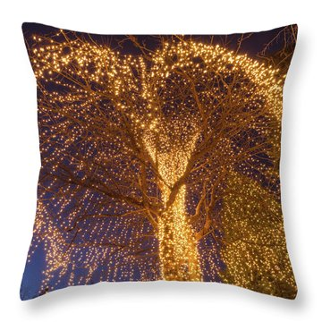 An Extrinsic Element  Throw Pillow