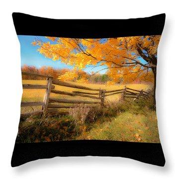 An Ideal Autumn Throw Pillow
