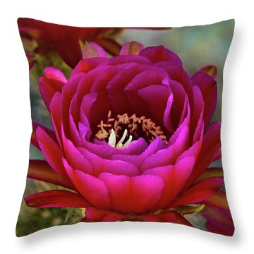 Throw Pillow featuring the photograph An Inner Beauty by Saija Lehtonen