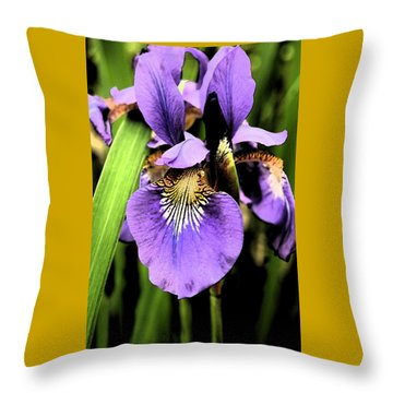 An Iris Portrait - Botanical Throw Pillow