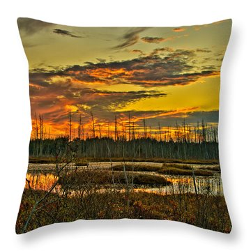 An November Sunset In The Pines Throw Pillow