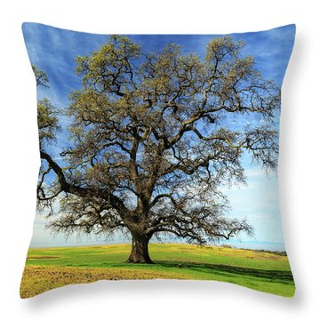 Throw Pillow featuring the photograph An Oak In Spring by James Eddy