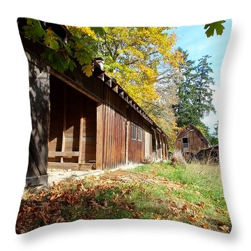An Old Farm Throw Pillow by Mark Alan Perry