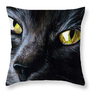 An Old Friend Throw Pillow by Daniel Carvalho