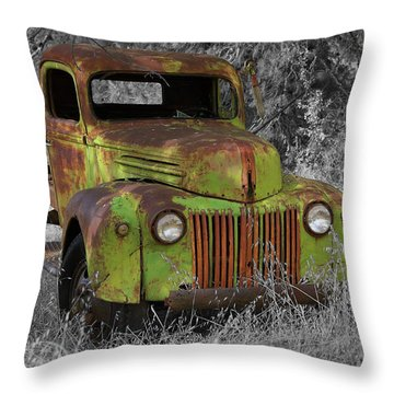 An Old Friend Throw Pillow
