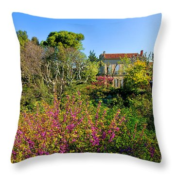 An Old House In Provence Throw Pillow by Olivier Le Queinec
