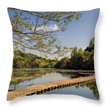 An Old Jetty Throw Pillow