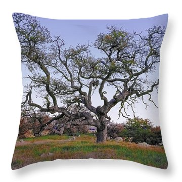An Old Oak Weave Throw Pillow