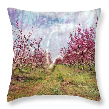 An Orchard In Blossom In The Golan Heights Throw Pillow