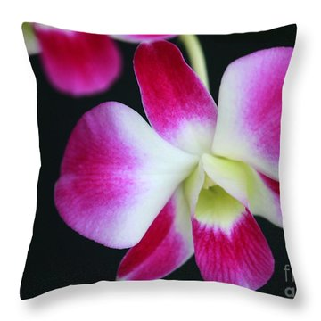 An Orchid Throw Pillow by Sabrina L Ryan