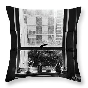 An Ordinary Kitchen Throw Pillow