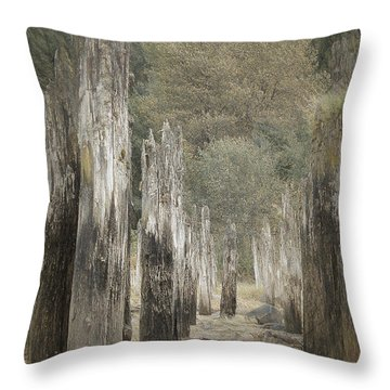 An Other Time Throw Pillow
