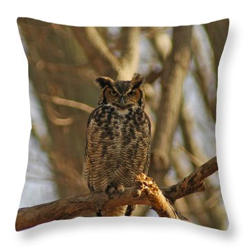 An Owl Throw Pillow by Raymond Salani III
