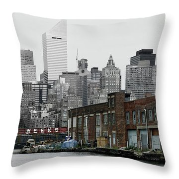 Anable Basin Throw Pillow