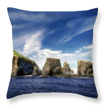 Channel Islands National Park - Anacapa Island Throw Pillow