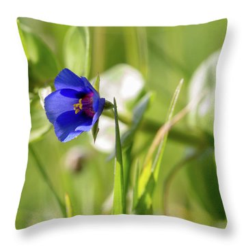 Anagallis Arvensis Throw Pillow