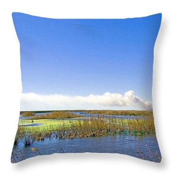 Anahuac Marshes Throw Pillow