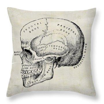 Anatomical Skull Medical Art Throw Pillow