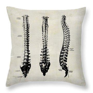 Anatomical Spine Medical Art Throw Pillow