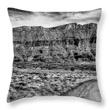 Ancient Arts Throw Pillow