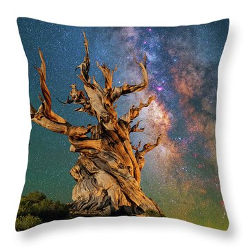 Ancient Beauty Throw Pillow