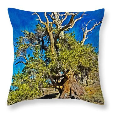Ancient Bristlecone Pine Throw Pillow