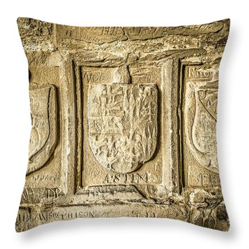 Ancient Carvings Throw Pillow