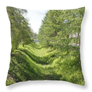 Ancient Ditch Throw Pillow by Evgeny Pisarev