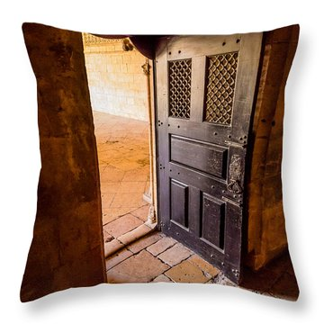 Ancient Door Throw Pillow