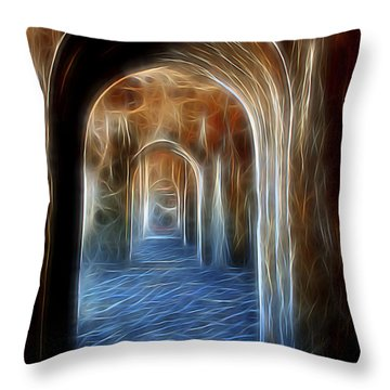 Ancient Doorway 5 Throw Pillow