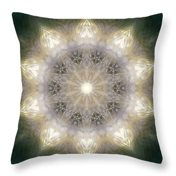 Ancient Light X Throw Pillow by Lisa Lipsett