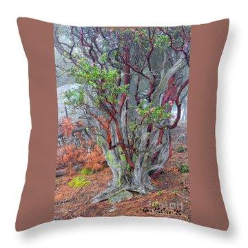 Ancient Manzanita No. 2 Throw Pillow