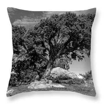 Ancient One Throw Pillow