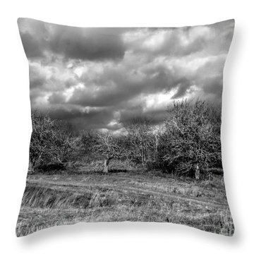 Ancient Orchard Throw Pillow