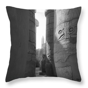 Throw Pillow featuring the photograph Ancient Silence by Silvia Bruno