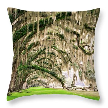 Ancient Southern Oaks Throw Pillow