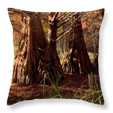 Throw Pillow featuring the photograph Ancient Tree At Lake Murray by Tamyra Ayles