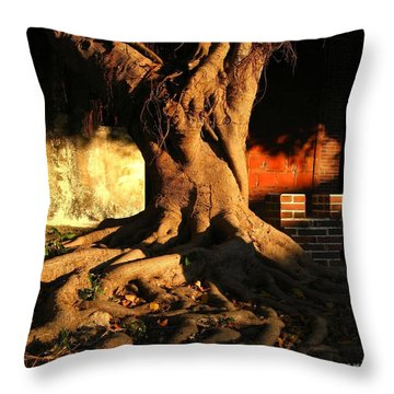 Ancient Tree In A Chinese Courtyard Throw Pillow by Yali Shi