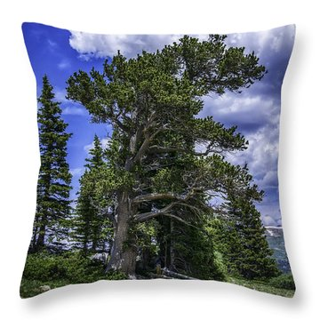 Throw Pillow featuring the photograph Ancient Winds by Bitter Buffalo Photography