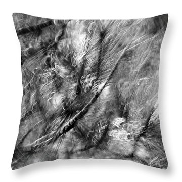 And An Additional Ten Trees On A Given Block Corresponded To A One-per-cent Increase In How Healthy  Throw Pillow by Danica Radman