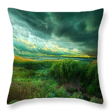 And For A Moment It Was Silent Throw Pillow by Phil Koch