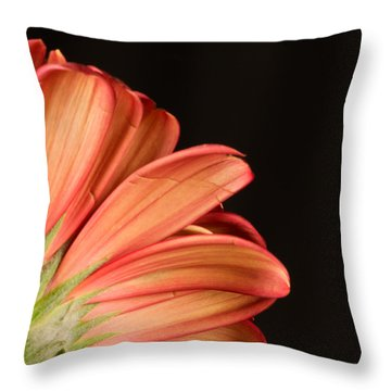 And Half Throw Pillow