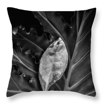 And I Will Catch You If You Fall Throw Pillow