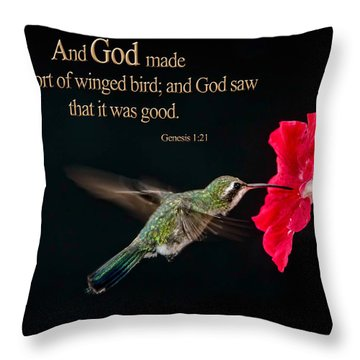 And It Was Good Throw Pillow