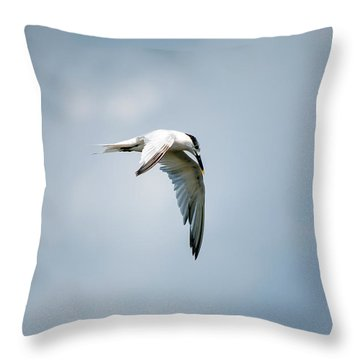 And Still The World Terns Throw Pillow