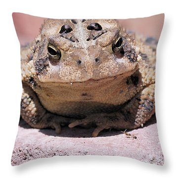 And The Ant Said Throw Pillow