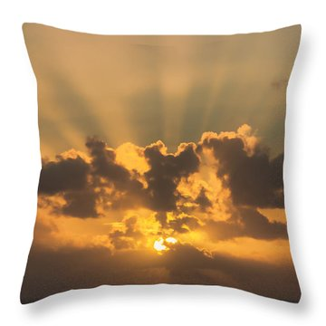 And Then There Was Day Five Throw Pillow by Roberta Byram